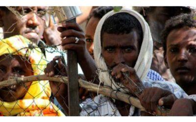 Perchè gli Eritrei scelgono l'Italia