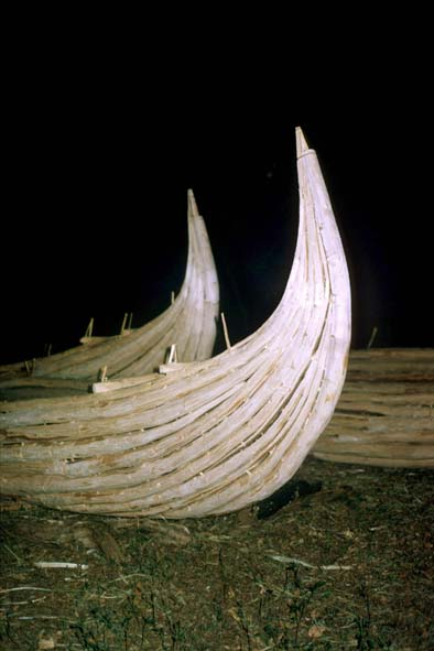 Clupguide:  ETIOPIA, 1996 – ERITREA, 1994 di Andrea Semplici